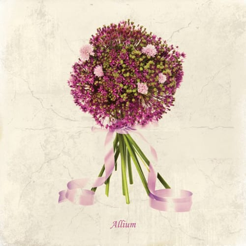 Beautiful floral cards from Dipingo Design…The Mimi Collection