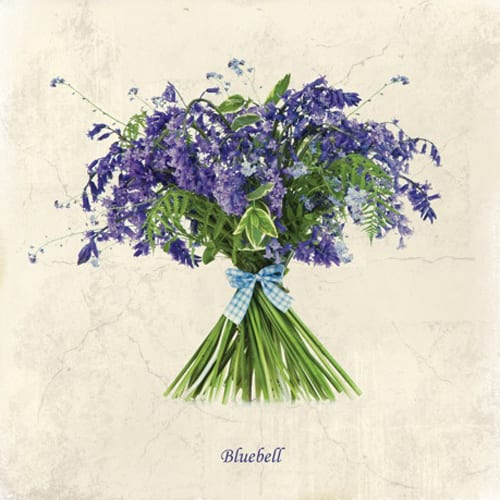 Mimi-Collection-Bluebell-Dipingo Design