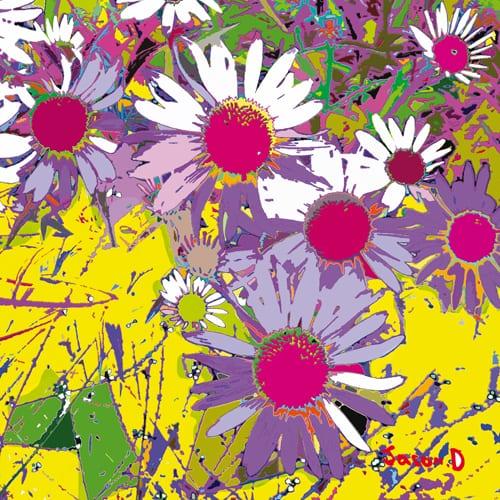 'Pop-Echinacea' - Jason D Prints
