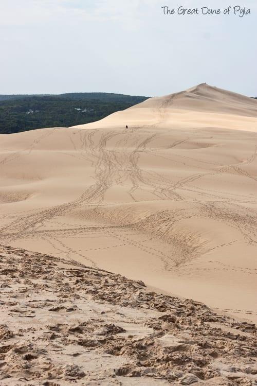 The-Great-Dune-of-Pyla-Flowerona