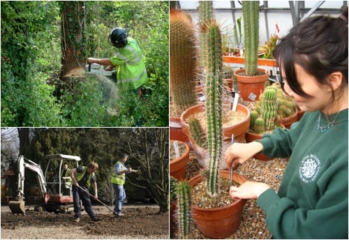 Grow Careers initiative…promoting careers in horticulture
