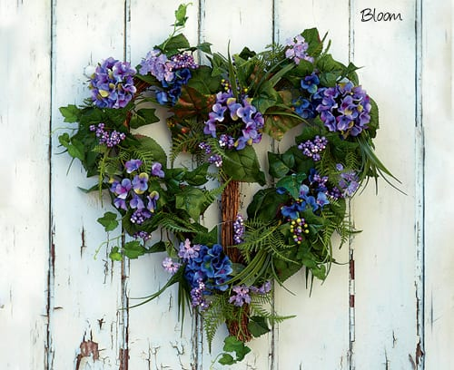 Bloom-hydrangea