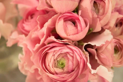 Designer-Wedding-Show-Flowerona-Zita-Elze-Summer