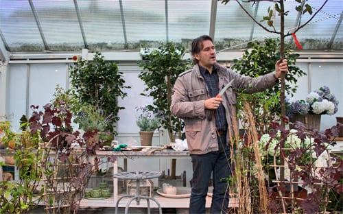 Matthew-Wilson-Clifton-Nurseries-Flowerona