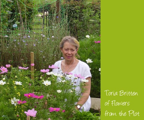 Toria-Britten-Flowers-from-the-Plot