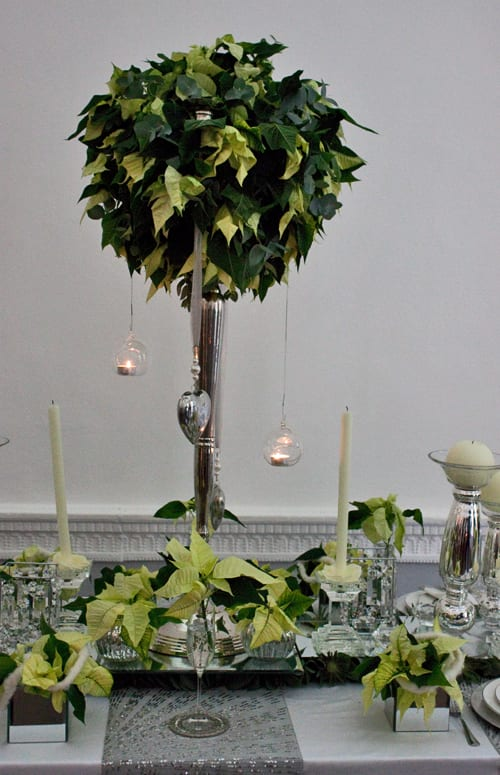Poinsettia Christmas table design by florist Ian Lloyd – White Christmas