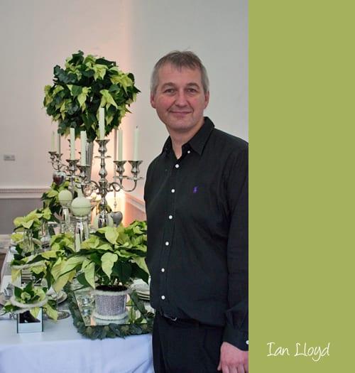 Ian-Lloyd-Poinsettias-Flowerona