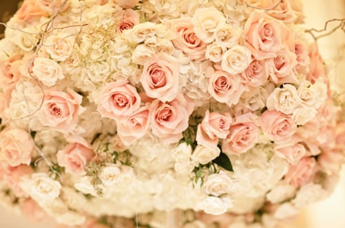 Planet-Flowers