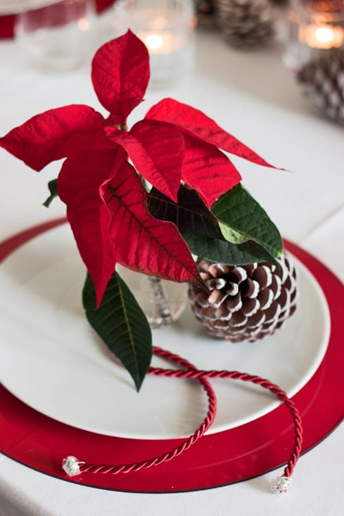 Poinsettia Christmas table design by The Urban Flower Firm – Contemporary Christmas