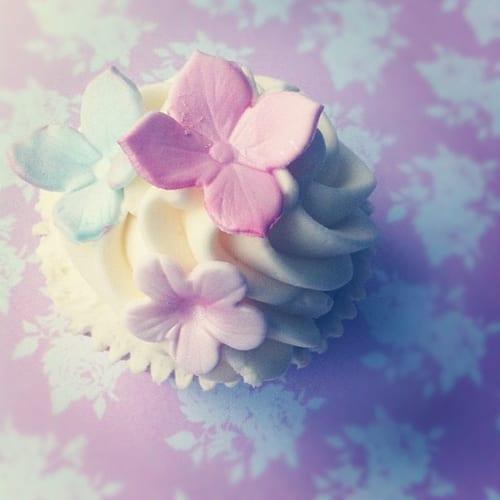 Cakes-by-Krishanthi-Floral-Cupcake
