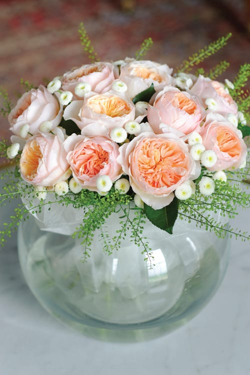 Juliet-in-glass-bowl-David-Austin-Roses