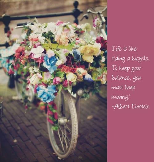 Sarah-Natsumi-Moore-Bicycle-Image