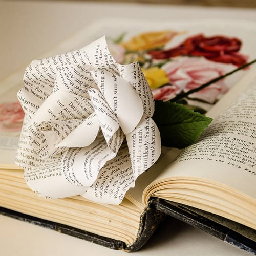 Bookish-original_ROSE1