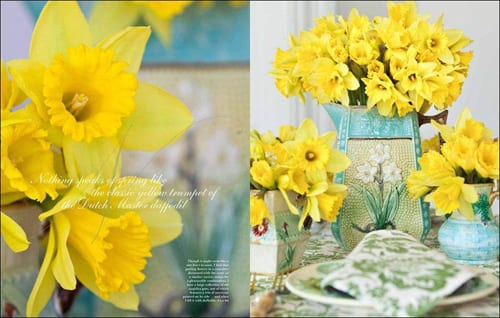 Flowers-by-Carolyne-Roehm-Daffodils