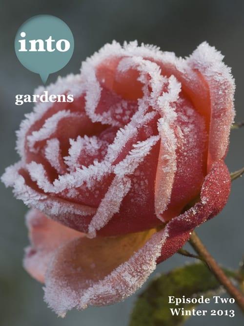 Into-Gardens-Winter-2013