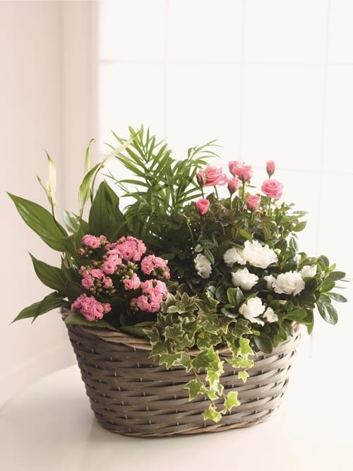 Large-Willow-Basket-Marks-&-Spencer