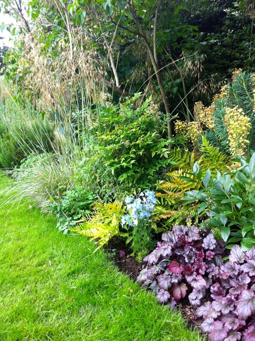 Introducing garden designer nina baxter flowerona for Garden border plant designs