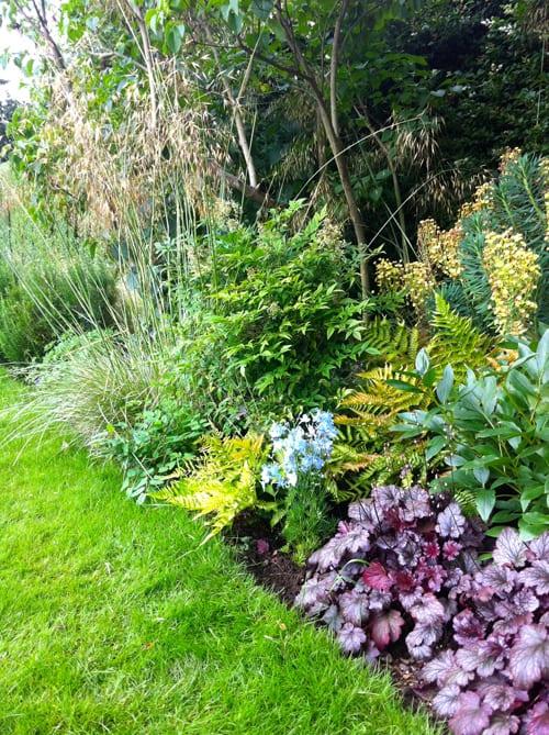 Lush-border-Nina-Baxter-Garden-Design
