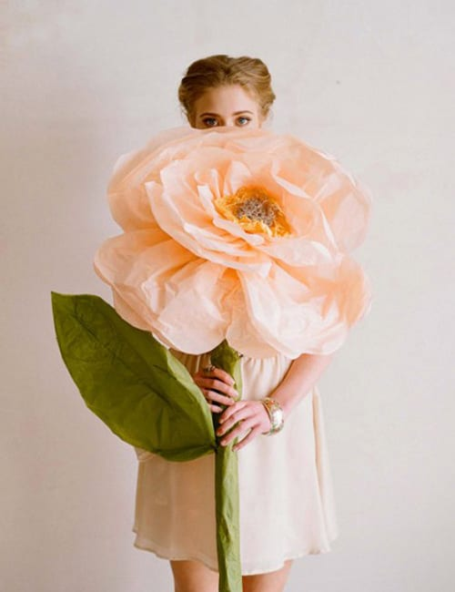 Paper-Flowers-Duitang