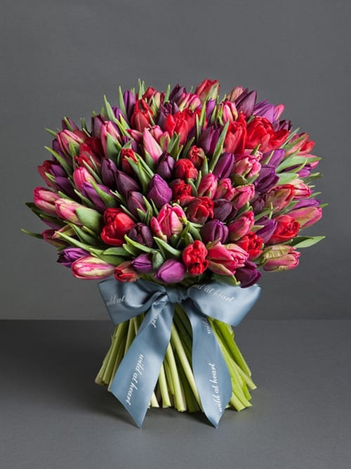 Romantic-Spring-Tulips-Wild-at-Heart