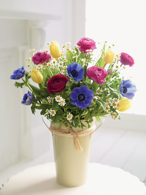 Spring-Pail-Marks-&-Spencer