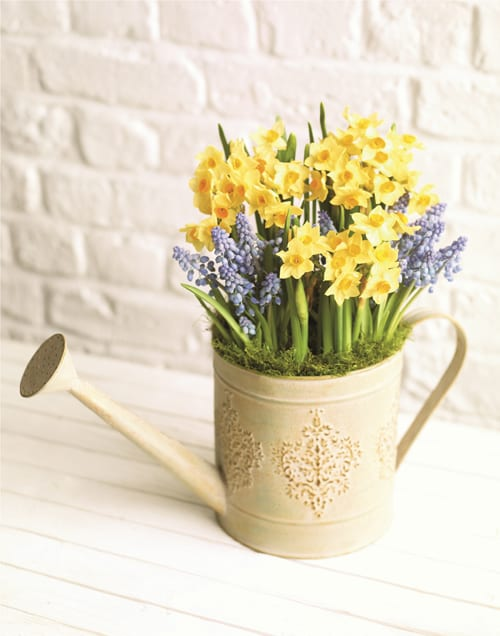 Spring-Watering-Can-Marks-&-Spencer