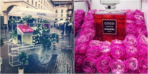 Chanel in Covent Garden Flower Stall Flowerona