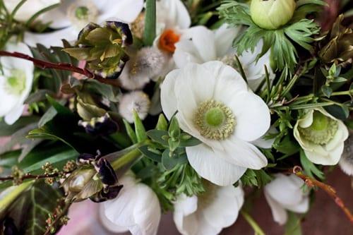 Georgie-Newbery-Flowerona