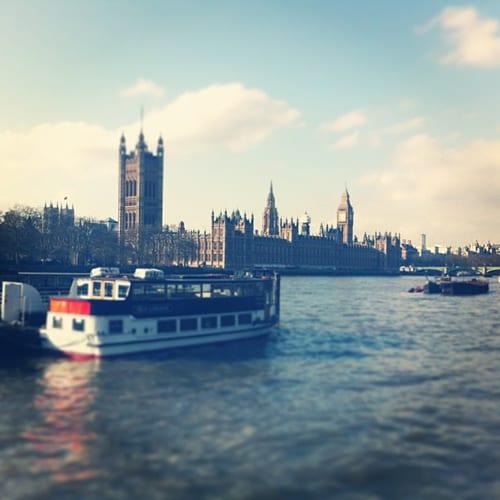 Houses-of-Parliament-London-Flowerona