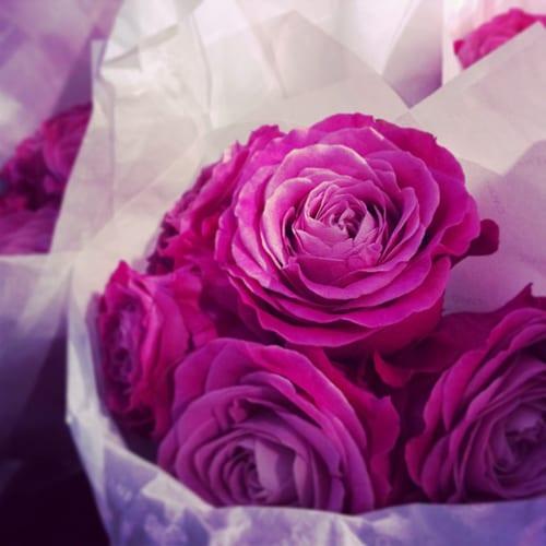 Pink-roses-at-Chanel-Flowerona