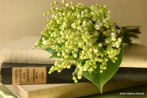 Sabine-Darrall-G-Lily-bridal-bouquet
