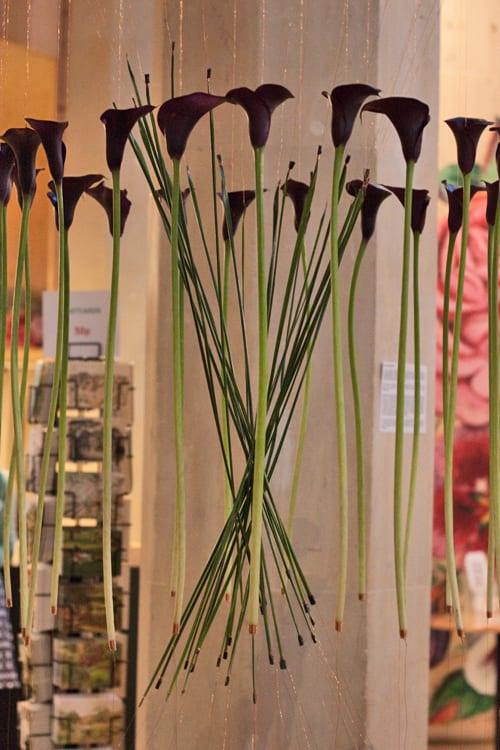 Floralia-Garden-Museum-Flowerona-Jana-Friedrich