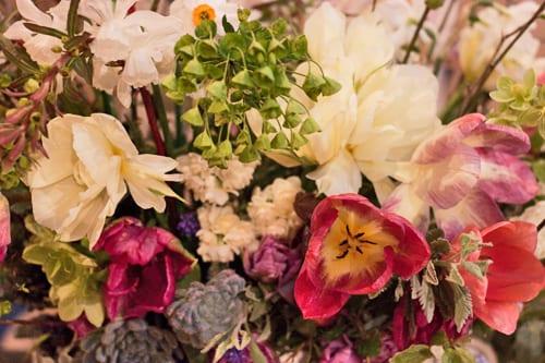 Floralia-Garden-Museum-Flowerona-Tamara-Hall-Wild-Bunch
