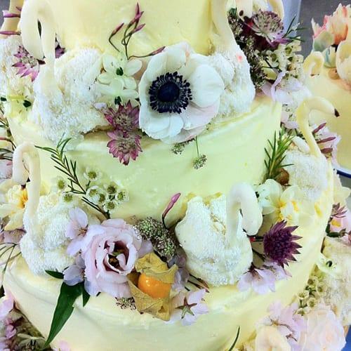 Pomp-de-Franc-Floral-Inspired-Cake-Flowerona
