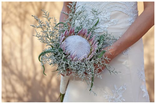 CF001-southbound-bride-wedding-likweti-lodge-laura-jane-photography-protea-bouquet
