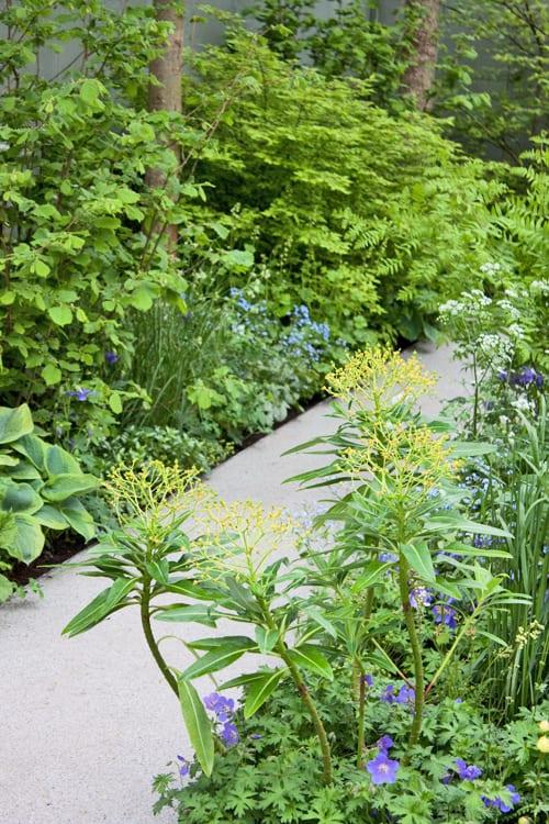 Jo-Thompson-Fera-Show-Garden-RHS-Chelsea-Flower-Show-Flowerona-4