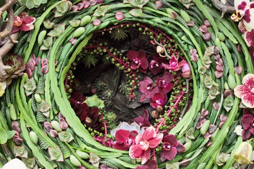 Rhs chelsea flower show 2013 rhs florist young florist of the