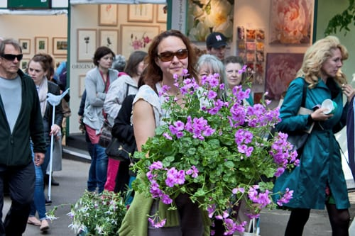 RHS-Chelsea-Flower-Show-2013-Sell-Off-Flowerona-8