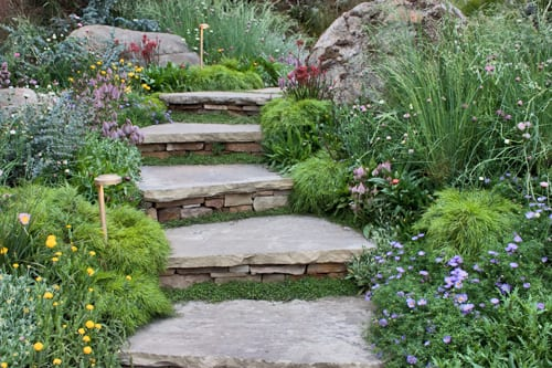 Steps on pinterest stone steps garden steps and for Chelsea flower show garden designs