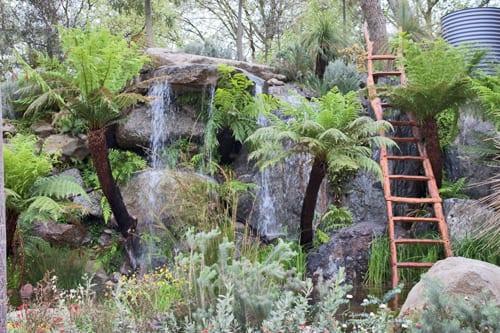 RHS-Chelsea-Flower-Show-2013-Trailfinders-Australian-Garden-Fleming's-Flowerona-4