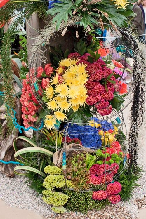 RHS-Chelsea-Flower-Show-NAFAS-Stand-Flowerona-3
