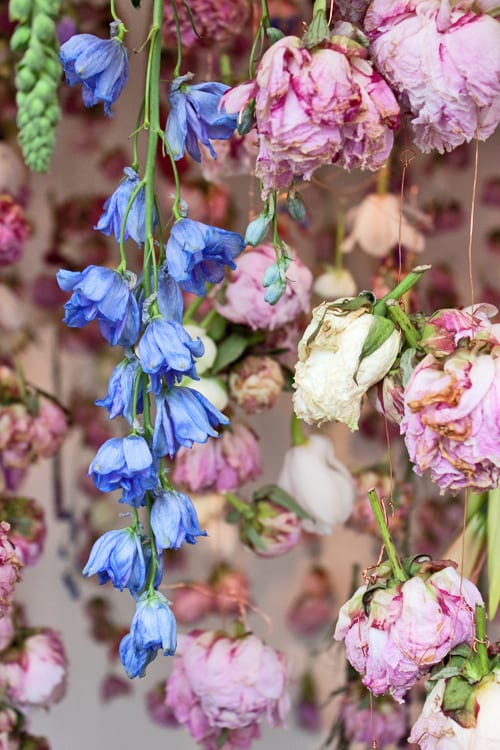 Rebecca-Louise-Law-Exhibit-RHS-Chelsea-Flower-Show-2013-Flowerona-3