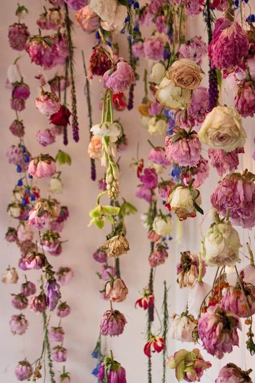 Rebecca-Louise-Law-Exhibit-RHS-Chelsea-Flower-Show-2013-Flowerona-5