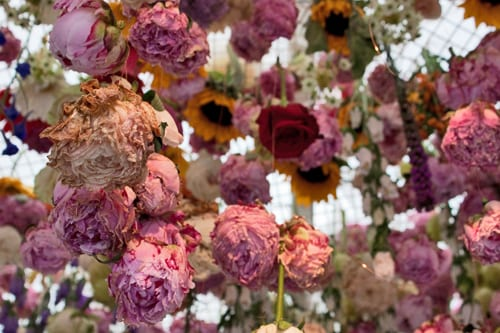Rebecca-Louise-Law-Exhibit-RHS-Chelsea-Flower-Show-2013-Flowerona-6