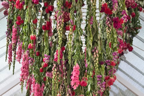 Stunning Floral Installation by Rebecca Louise Law at Clifton Nurseries in London