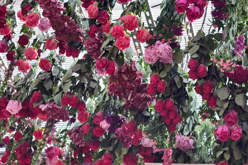 Rebecca-Louise-Law-Floral-Installation-Clifton-Nurseries-Flowerona-3