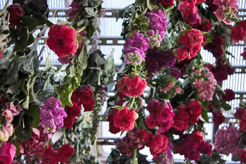 Rebecca-Louise-Law-Floral-Installation-Clifton-Nurseries-Flowerona-5