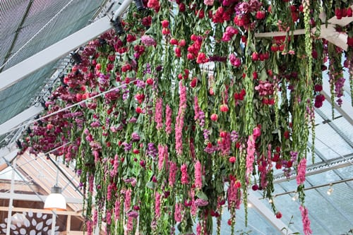 Rebecca-Louise-Law-Floral-Installation-Clifton-Nurseries-Flowerona-6