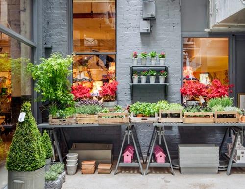 The-Balcony-Gardener-Pop-Up-Shop-Squint-Chelsea-Fringe-2
