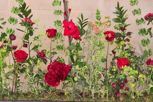 Guildford-Cathedral-Flower-Gala-Flowerona-3